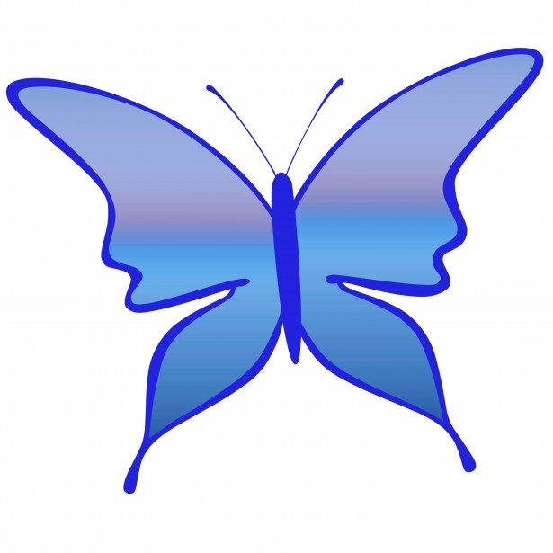 blue butterfly clipart wingspan