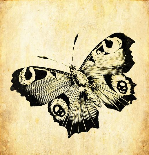 big blue and black beautiful butterfly realistic clipart image