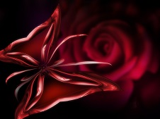 digital art red rose and red butterfly