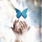 Hands reaching for blue butterfly