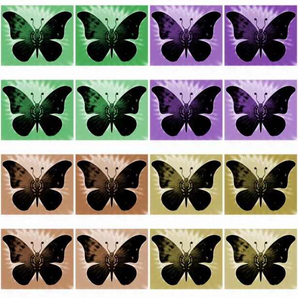 colored butterflies art
