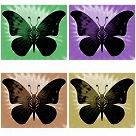 artistic butterfly art