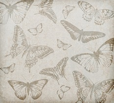 vintage butterflies digital art
